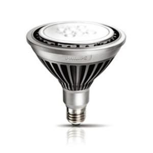 雷竞技手机版LED PAR30
